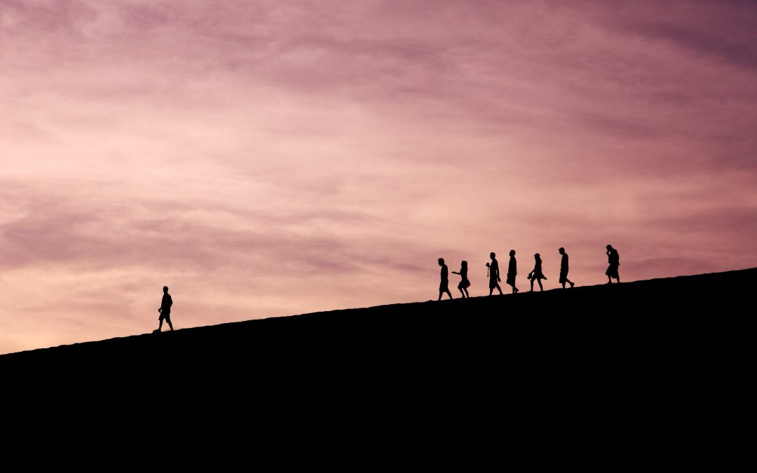 The Importance of Collective Leadership