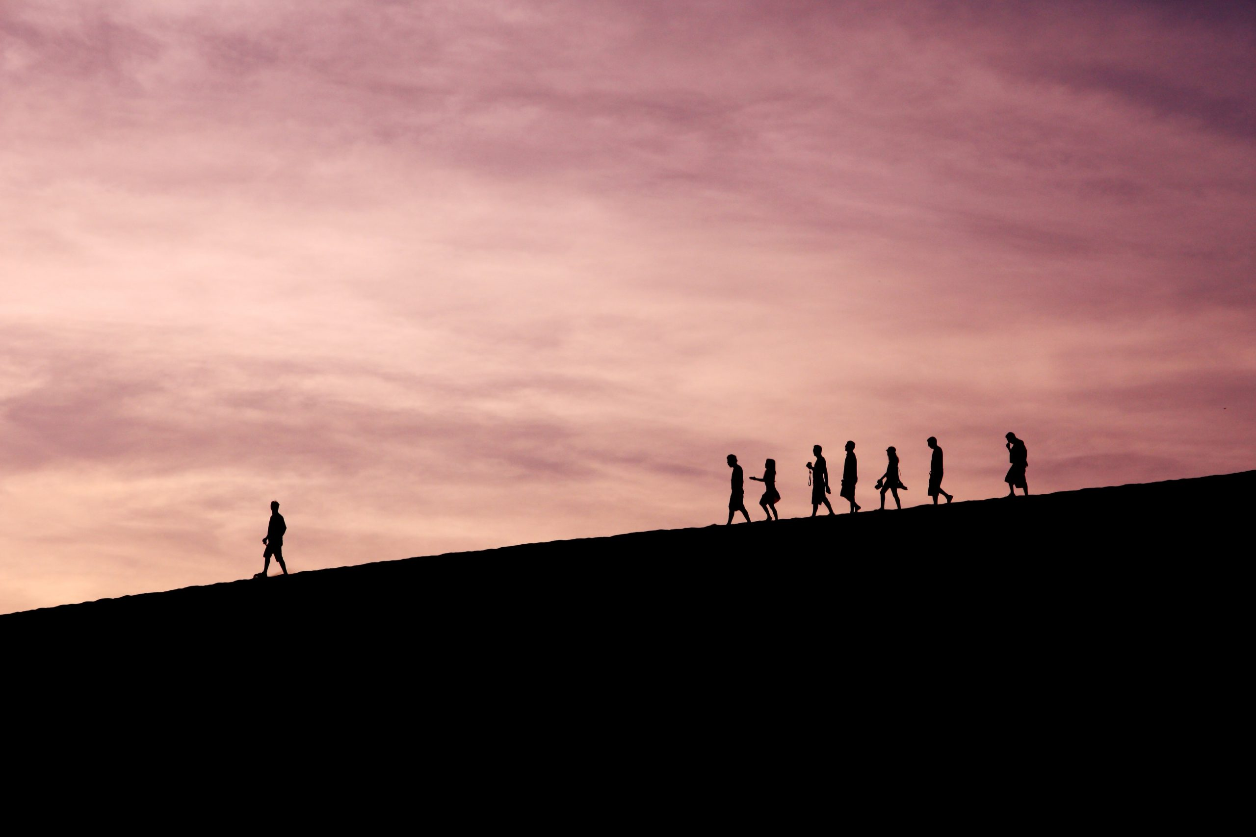 [Test] The Importance of Collective Leadership